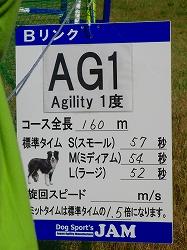11102910 AG1