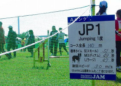 11102920 JP1