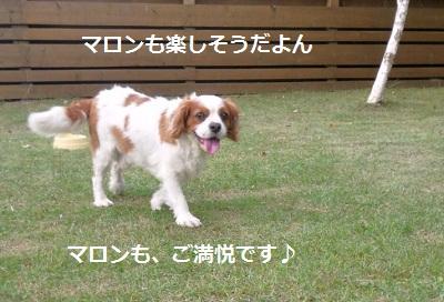 2011_0716_163314-P1100812.jpg