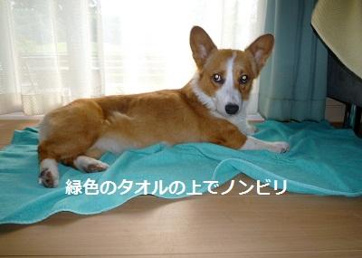 2011_0716_175119-P1100822.jpg