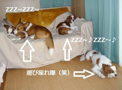 2011_0716_175134-P1100823.jpg