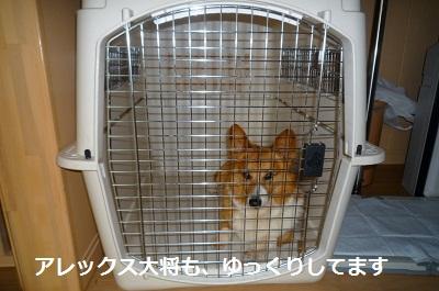 2011_0716_175247-P1100828.jpg