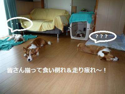 2011_0717_124225-P1100881.jpg