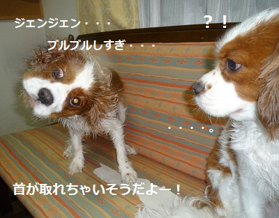 2011_0718_182320-P1100996.jpg