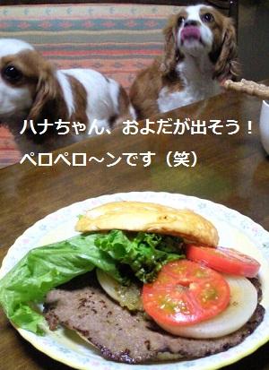 2011_0730_210013-P1110063.jpg