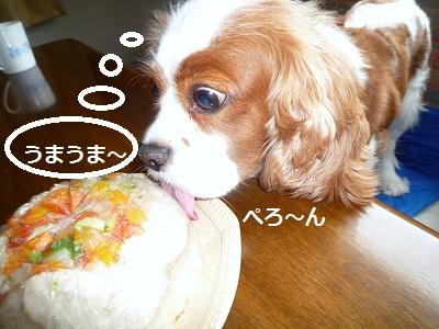 2011_0820_121605-P1110138.jpg