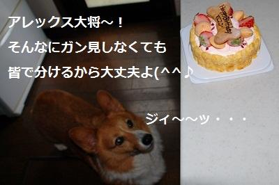 2011_0901_114631-DSC_0867.jpg