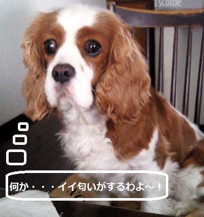 201203231457000.jpg