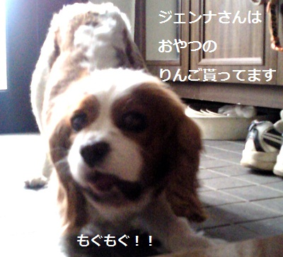 2012032314580001.jpg