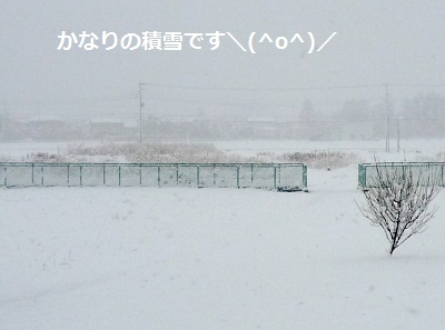 2012_0229_104359-P1130410.jpg