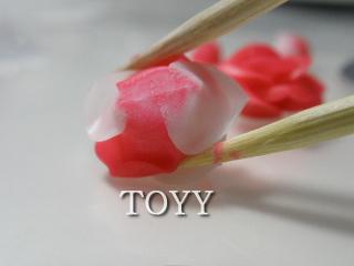 薔薇004