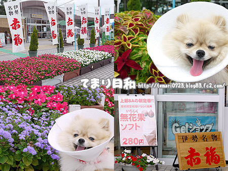 2009/8/9 東名(上り)2