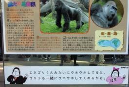 上野動物園のエネゴリ君