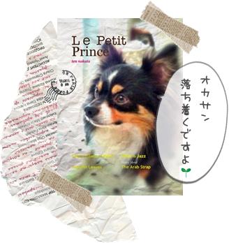 pp22つ