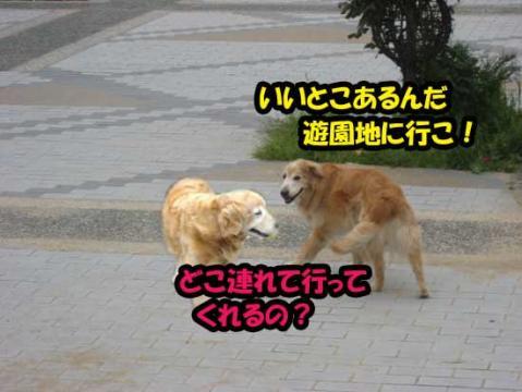 c85f65c8b1809ca5d81ccd00cbaab63c.jpg