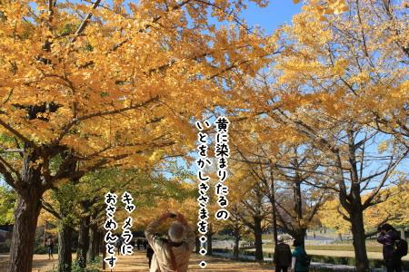昭和記念公園へ