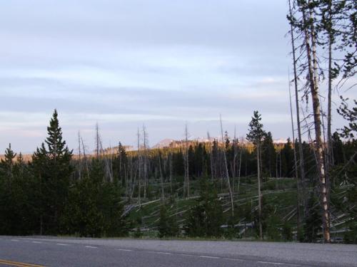 20080705林