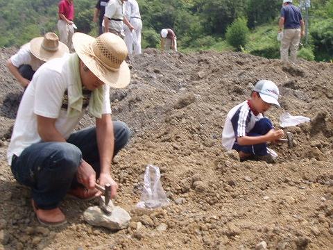 85化石を掘る人たち
