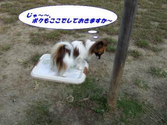 10-03_20081012200849.jpg