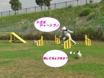 10-05_20081012200933.jpg