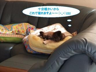 25-03_20110325130838.jpg