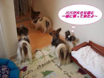 26-01_20081027091632.jpg