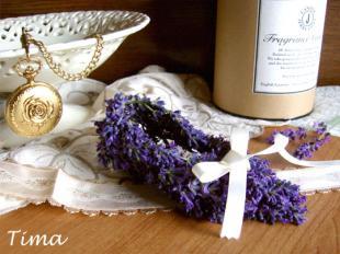 lavenda_convert_20081023103626.jpg