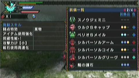 双剣×ジンオウガ(10分06秒)手数微妙 装備