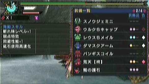 双剣×ジンオウガ(9分36秒)装備