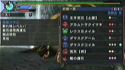 亜ナル×双剣(4分31秒)捕獲 装備