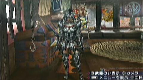 【MHP3】猫火事場双剣(縛りなし)×ロアル原種 装備見た目正面