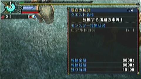 【MHP3】猫火事場双剣(縛りなし)×ロアル原種(3分54秒)