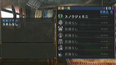 双剣×バキジンオウガ(10分59秒)装備詳細