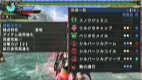双剣×ジンオウガ(7分23秒)装備