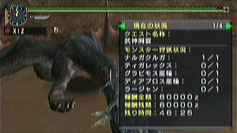 双剣×武神(1ナルガ討伐46分25秒)