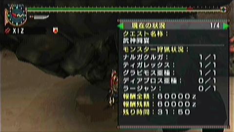 双剣×武神(3グラビ討伐31分50秒)
