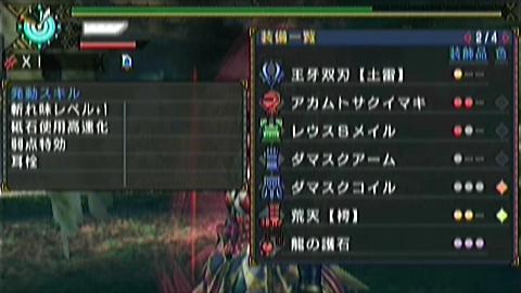 双剣×ナルガ原種(6分05秒)スキル