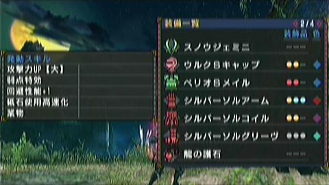 双雷×双剣(8分46秒) 装備