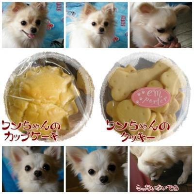 ワンちゃん用ケーキ&クッキー