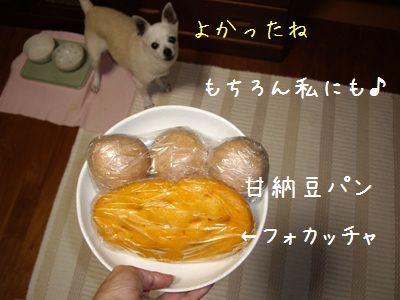 ゆるさくトマトパン2
