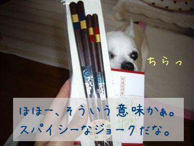 ぴっぴさん5
