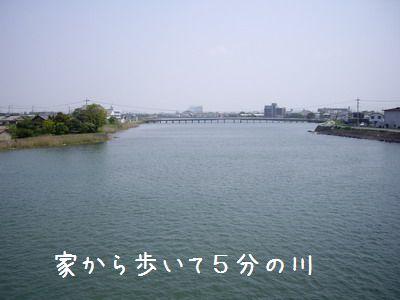 IMGP6623.jpg