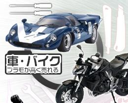 05car-bike_on.jpg