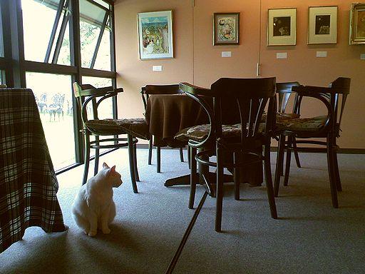 猫ねこ展2008-2