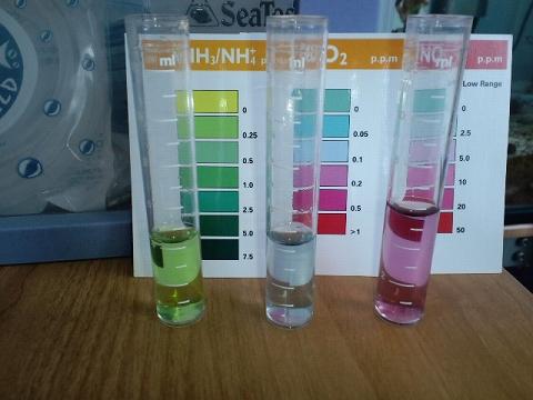 水質検査090720