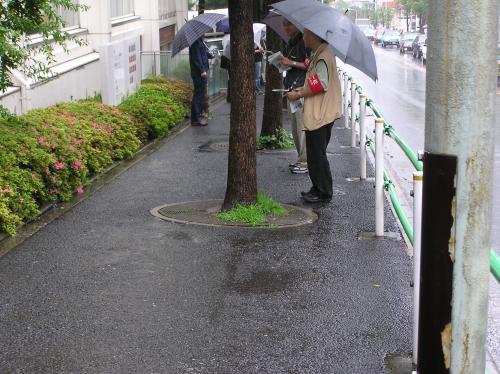 NTT総会②