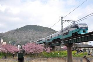 2011年2月27日 伊豆急行線 JR東日本251系