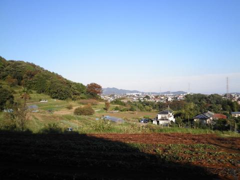 秋の青空88