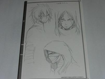 フェアリーテイル コミックス第31巻特装版3
