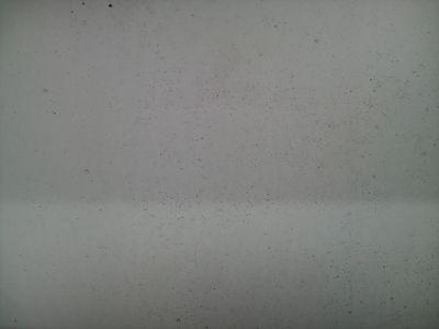 081011洗車2